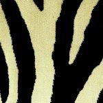 Africa Zebra Large farve 1000 510